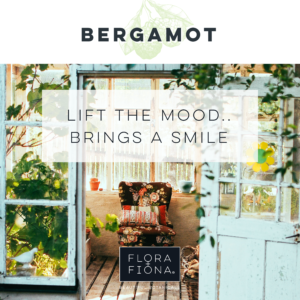 "A view into an old style conservatory with a pastel blue door. Foliage surrounds a comfortable chair sitting on a tiled floor under the slanting sun. Text superimposed on the image reads ""Bergamot: Lift the Mood; Brings a Smile"""