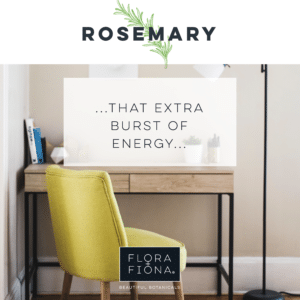 "In a bright photograph there is a zesty green coloured fabric covered chair at a wooden desk with a black frame.. Superimposed text reads: ""Rosemary: that extra burst of energy."""